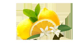 L-аскорбиновая кислота (витамин С)